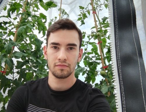 Agronomy Student Advances Plant Electrophysiology Research on Tomato – Spider Mite Interactions